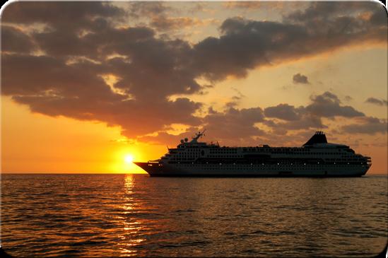 Cruises[1]