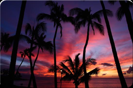 Hawaii[1]