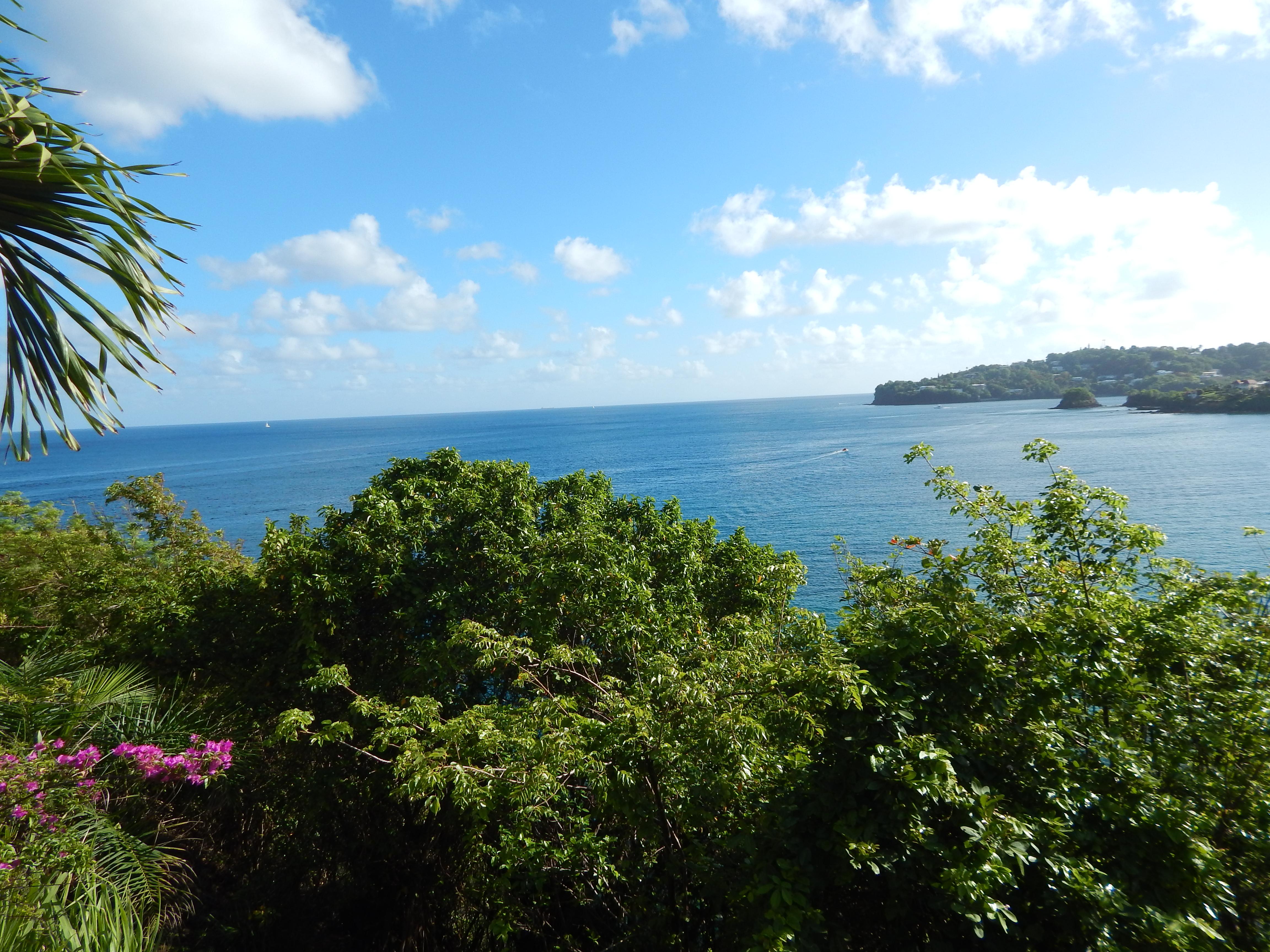 Sandals Regency La Toc St Lucia World Class Cruises Amp Tours